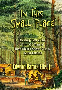 In This Small Place by Edward Barnes Ellis, Jr.